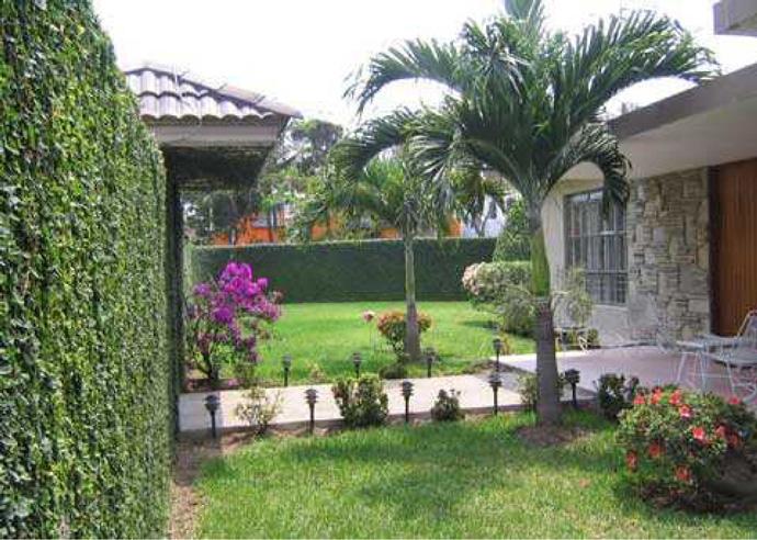 El jard n del frente de tu casa revista mandu 39 a for Jardines exteriores para casas pequenas